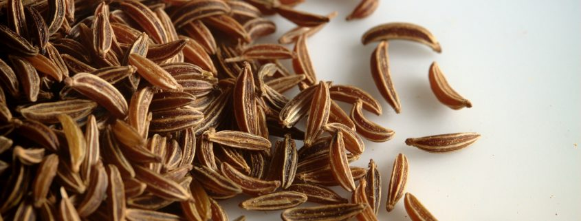 seed coating on canadian seeds